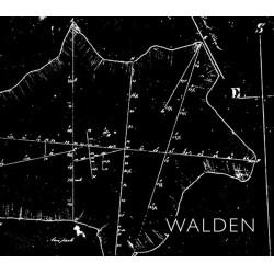 SB Walker - Walden (Kehrer, 2017)