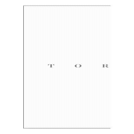 Nicolas Wormull - Torso (André Frère Editions, 2017)