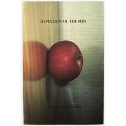 António Júlio Duarte - Deviation of the Sun (Centro Cultural Vila Flor, 2013)