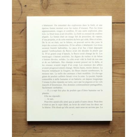 Nicolas Guiraud - Anthropocène (Poursuite Editions, 2014)