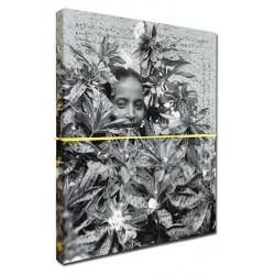 Eric Gottesman - Sudden Flowers (Fishbar, 2014)