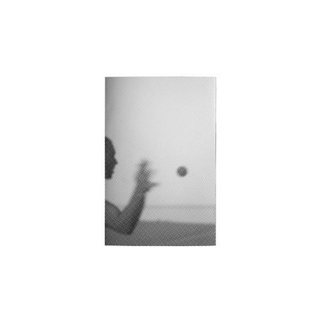 Fabrizio Albertini - The Mecca of Coney Island (Skinnerboox, 2014)