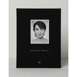 Zhang Wei - Artificial Theater (Jiazazhi, 2014)