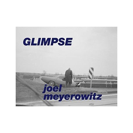 Joel Meyerowitz - Glimpse (Super Labo, 2014)