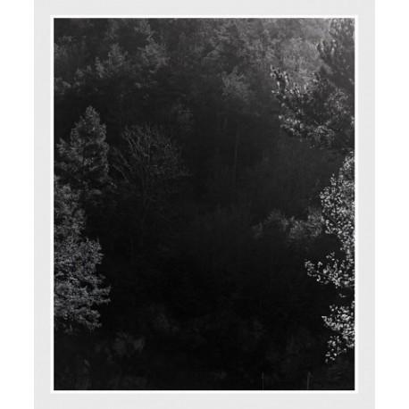 Awoiska van der Molen - Sequester (Fw Photography, 2014)