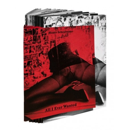 Hester L. Scheurwater - All I Ever Wanted (Editions Bessard, 2015)