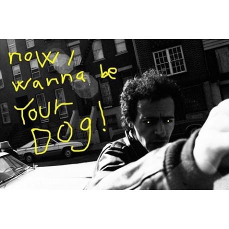 Morten Andersen - Now I wanna be your dog ! (Média Immédiat, 2015)