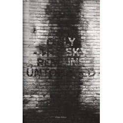 Claire Felicie - Only the Sky Remains Untouched (Auto-publié, 2016)