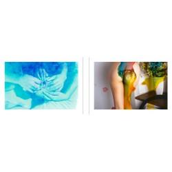 Nobuyoshi Araki - Blue Period / Last Summer
