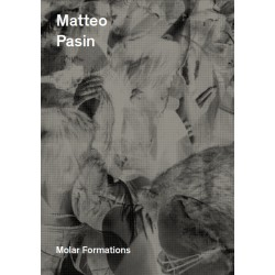 Matteo Pasin - Molar Formations ( Yes I am Writing A Book , 2014)
