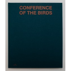 Sybren Vanoverberghe - Conference of the Birds (APE, 2019)
