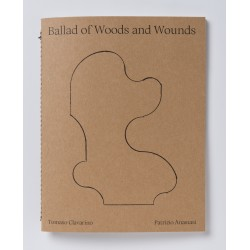 Tomaso Clavarino - Ballad of Woods and Wounds (Studiofaganel, 2020)