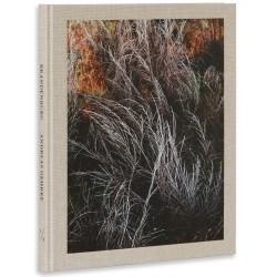 Andreas Gehrke - Brandenburg (Drittel Books, 2017)