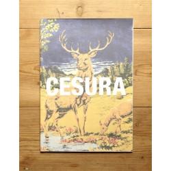 Collective publication - CESURA Fanzine 00 (Cesura, 2014)
