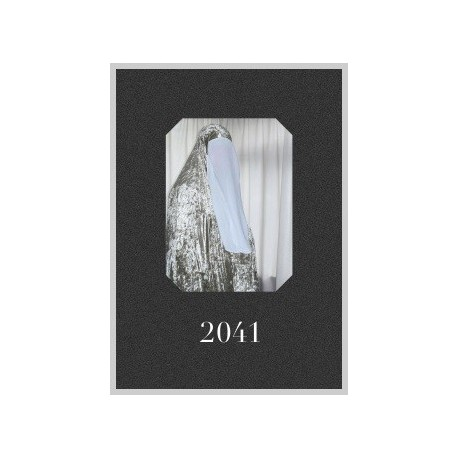 2041 - 2041 (Here Press, 2014)