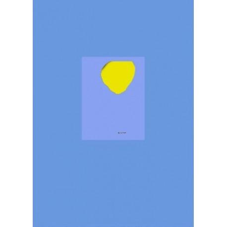 Tiane Doan na Champassak - DICK 999 (RVB Books, 2014)