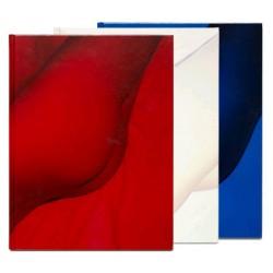 Tiane Doan na Chapassak - Sunless (Editions du LIC, 2014)