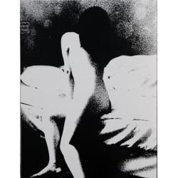 Daisuke Yokota - Taratine (Session Press, 2015)