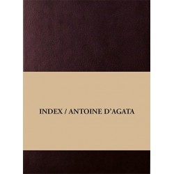 Antoine d'Agata - Index (D.Books / André Frère Editions, 2015)