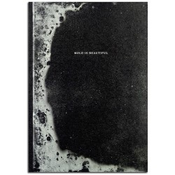 Luce Lebart - Mold Is Beautiful (Poursuite Editions, 2015)