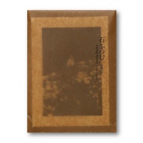 Munemasa Takahashi - Laying Stones (Auto-publié, 2015)