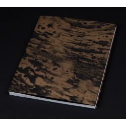 Matthieu Litt - Horsehead Nebula (Auto-publié, 2016)